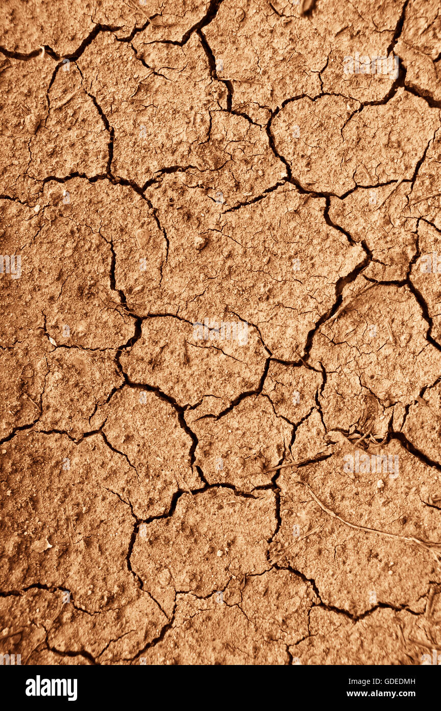 extremely dry ground cracked, water shortage concept - Stock Image
