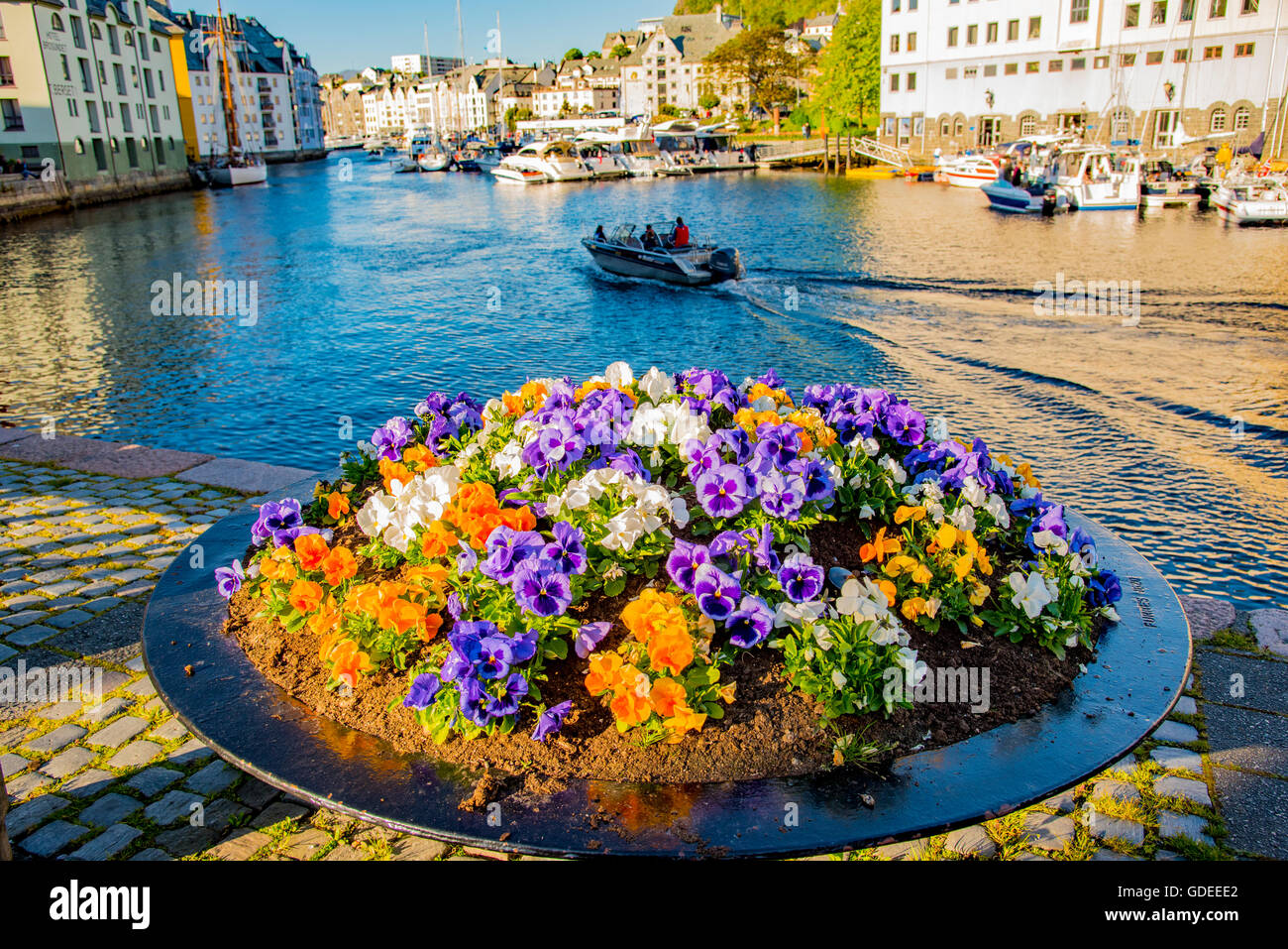 Beautiful array of colorful flowers and boat cruising in Brosundet Canal. Alesund, Norway, More og Romsda, Scandanavia, - Stock Image