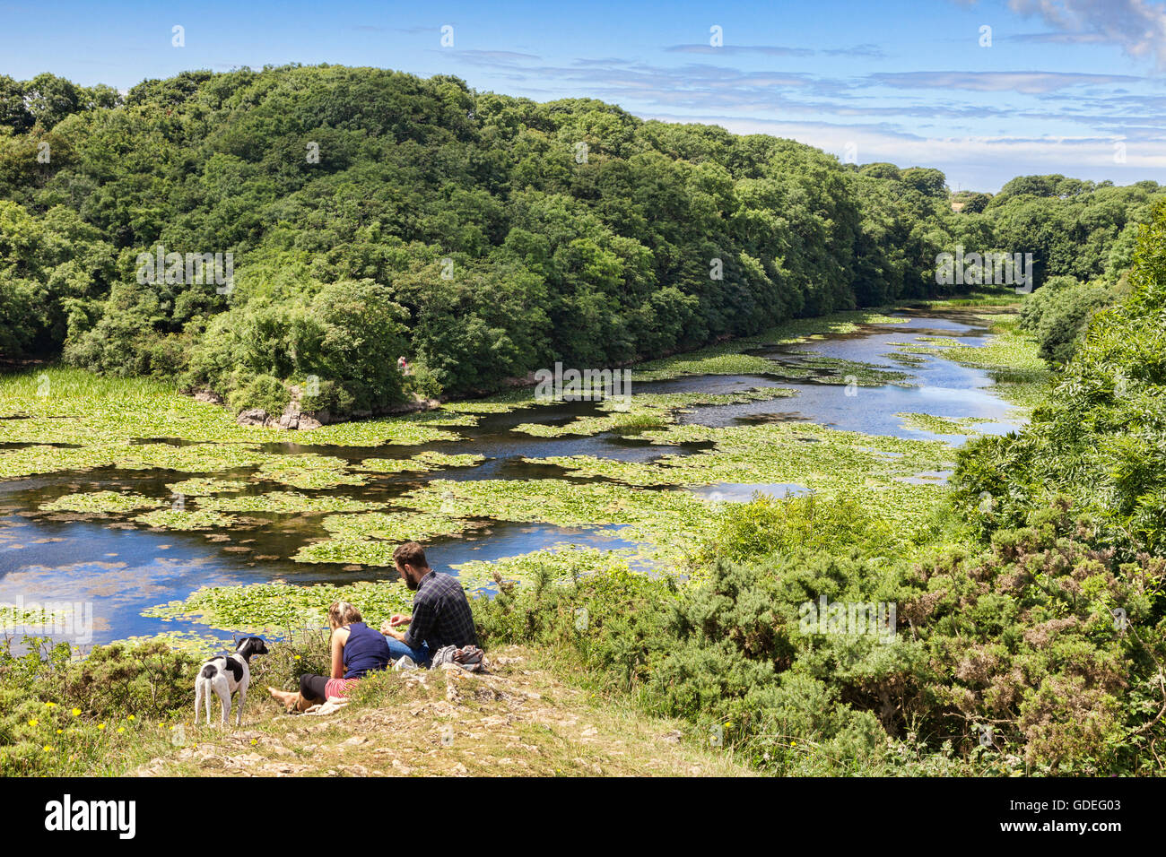 Young couple at Bosherston Lily Ponds, on the Stackpole Estate, Pembrokeshire Coast National Park, Wales, UK - Stock Image