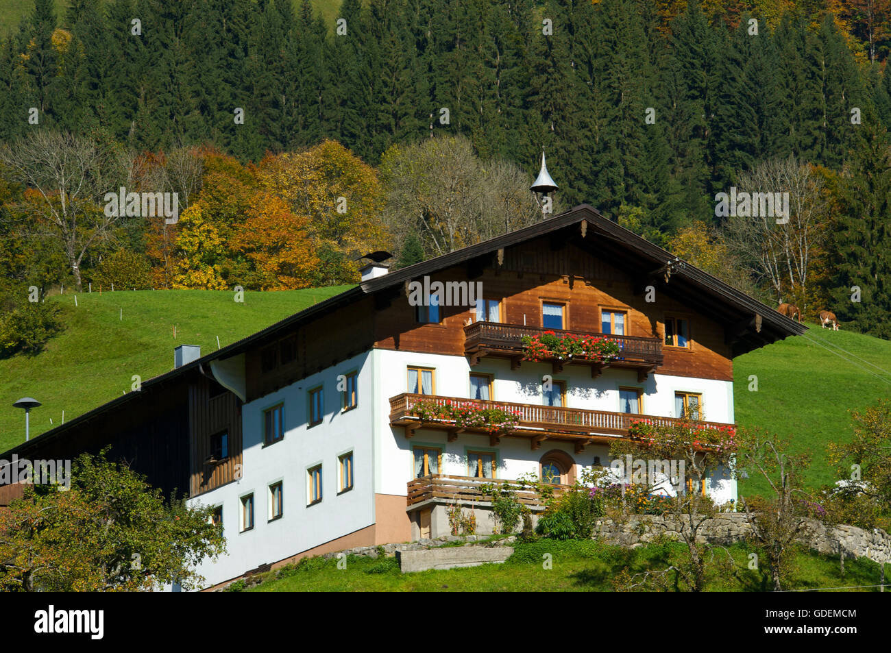 Cottage at Unken, Pinzgau, Salzburger Land, Austria Stock Photo