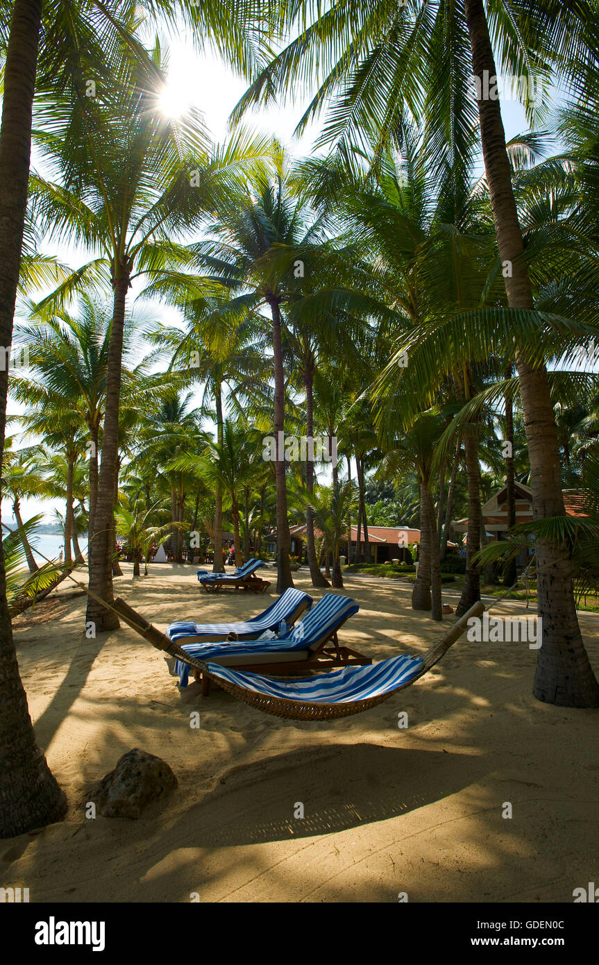 Mae Nam Beach, Ko Samui Island, Thailand - Stock Image