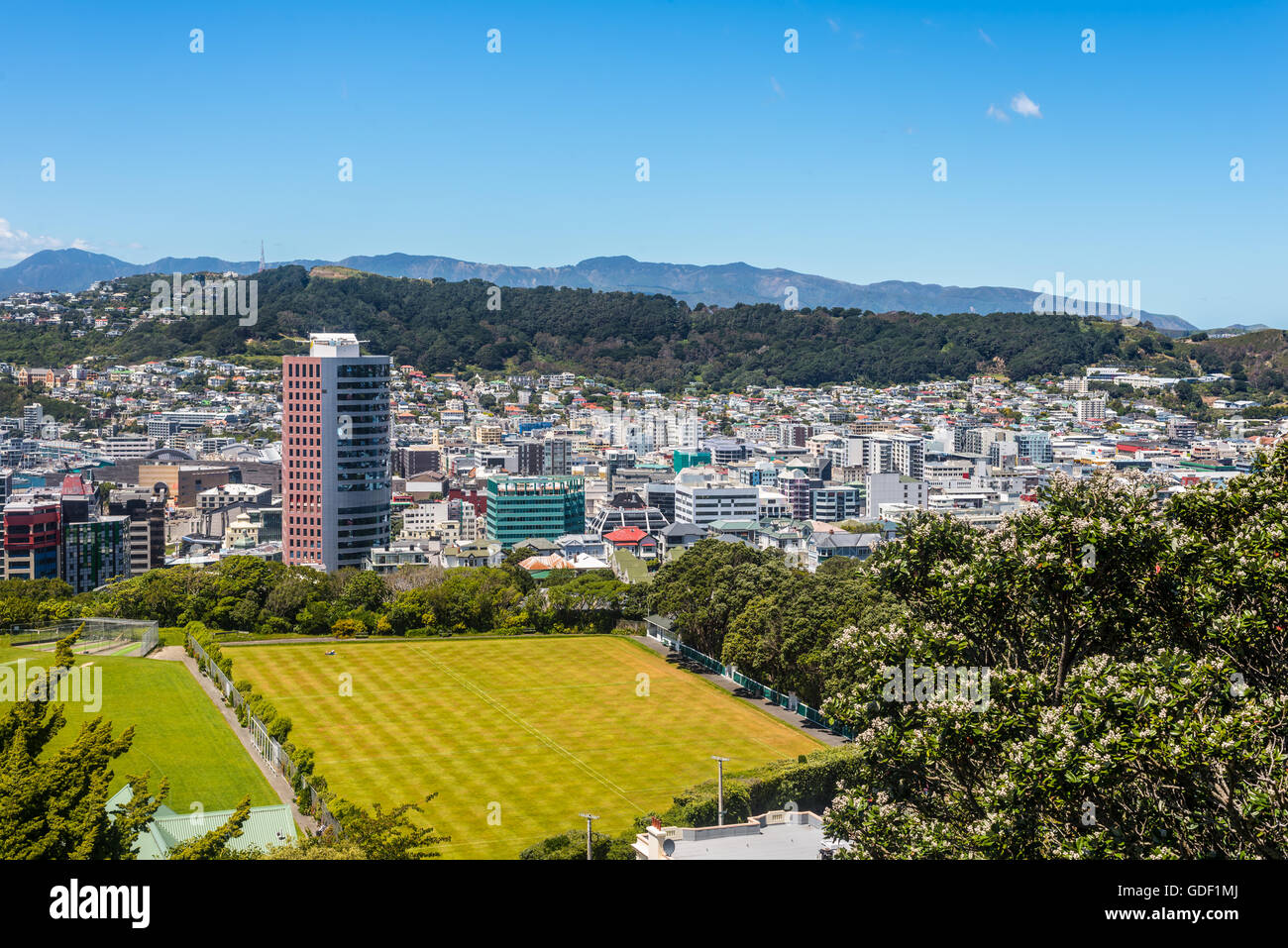 View of Mt Victoria over Wellington CBD, capital city of New Zealand. Modern architecture and Cricket Field in the Stock Photo