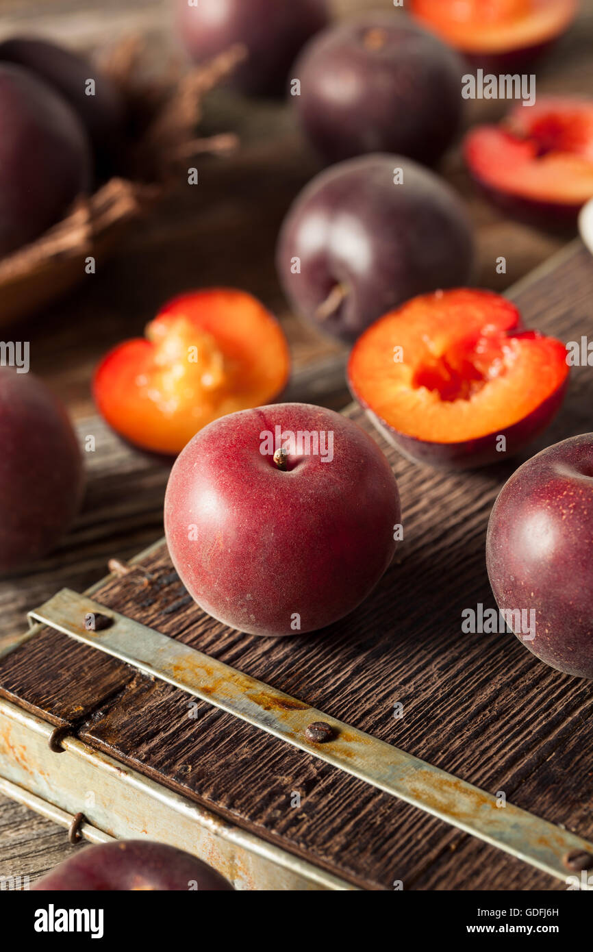 Raw Organic Black Apricot Fruit Ready to Eat - Stock Image