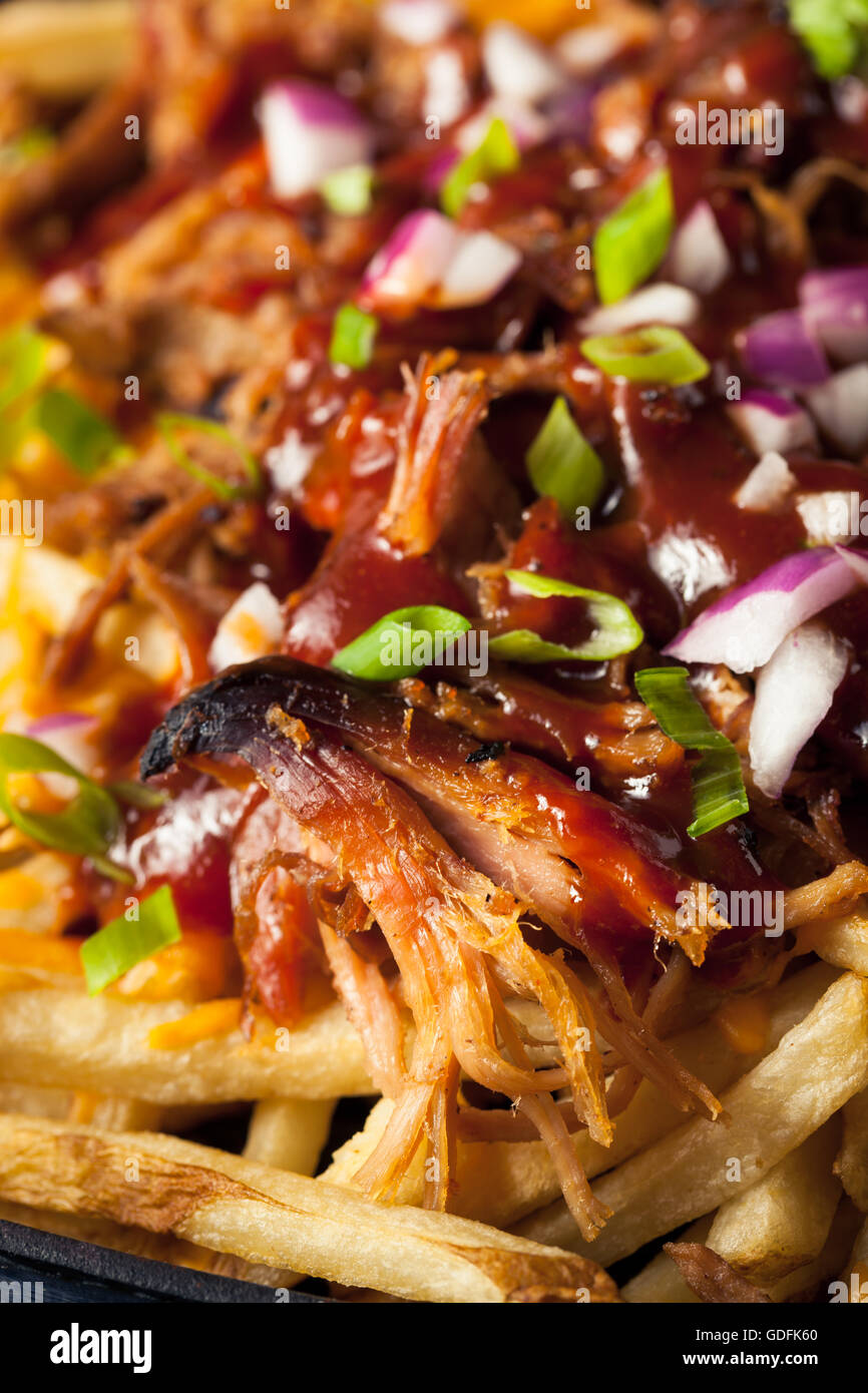 Homemade BBQ Pulled Pork French Fries with Sauce - Stock Image