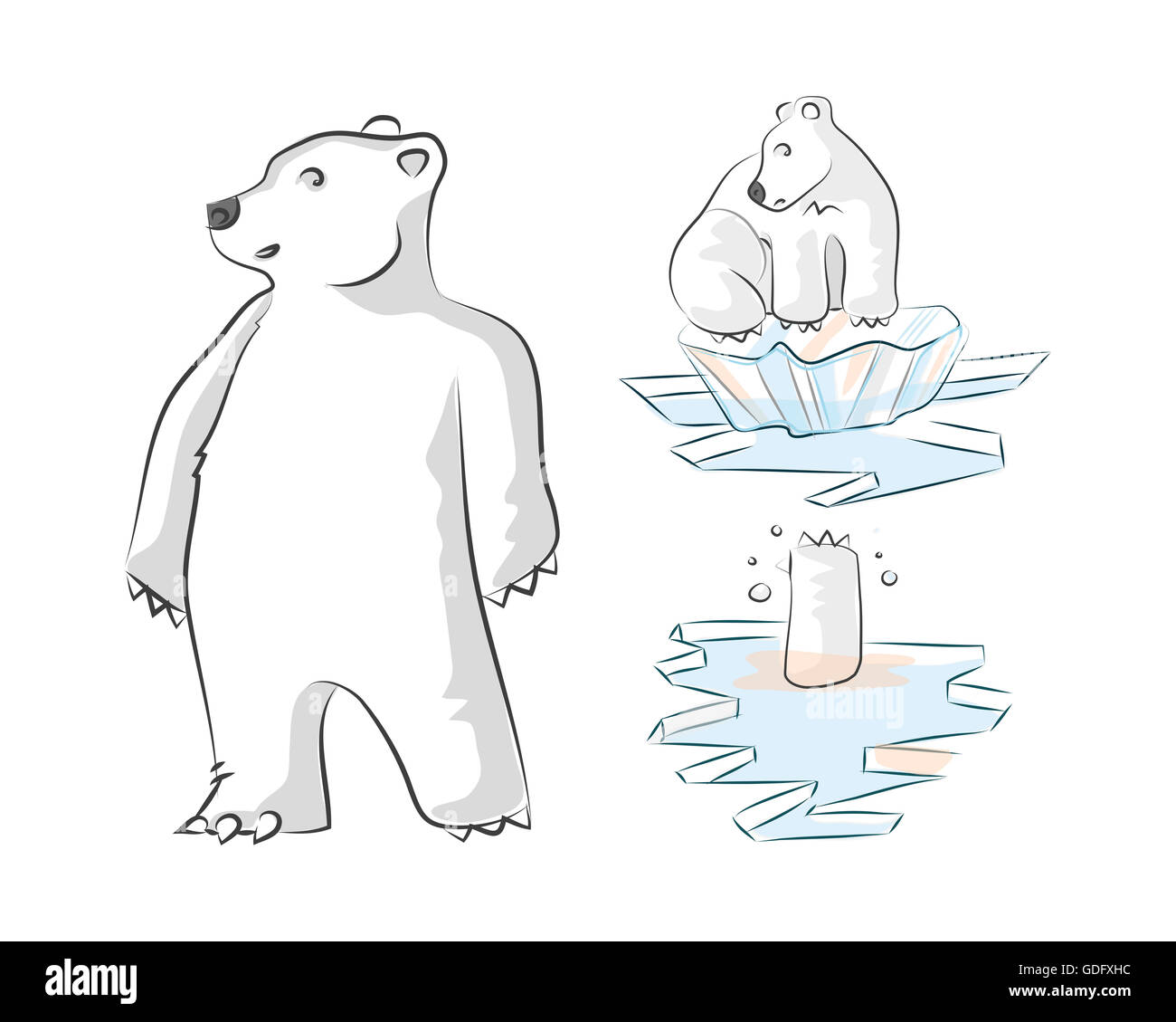 Hand Drawn Illustration And Drawing Of A Polar Bear On