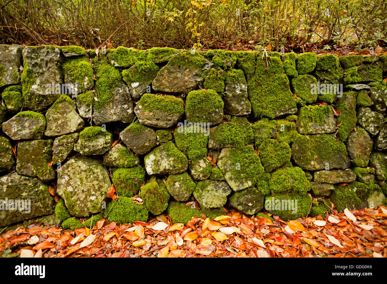 Retaining Wall Garden Stock Photos & Retaining Wall Garden Stock ...