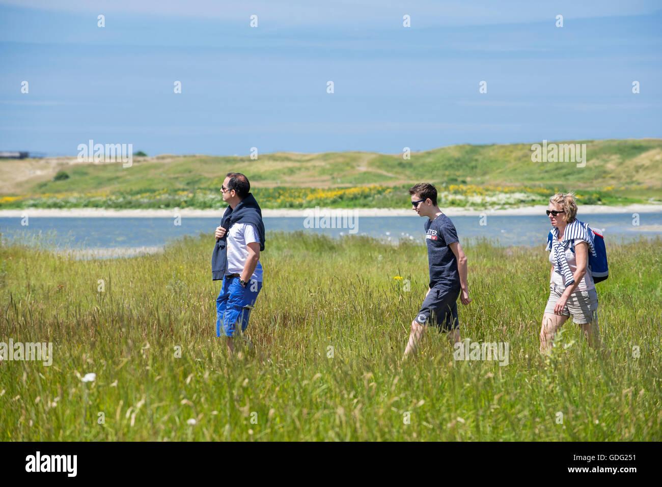 Visitors walking in saltmarsh at the Zwin Nature Park, bird sanctuary at Knokke-Heist, West Flanders, Belgium - Stock Image