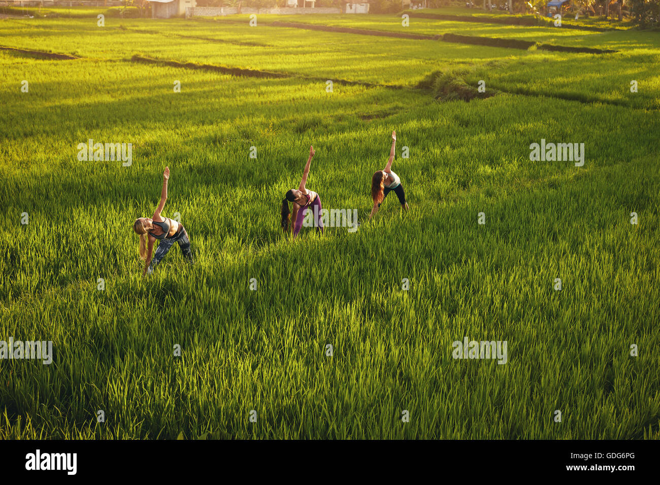 Outdoor shot of young people exercising in farm. Three young women working out in green farm land. - Stock Image