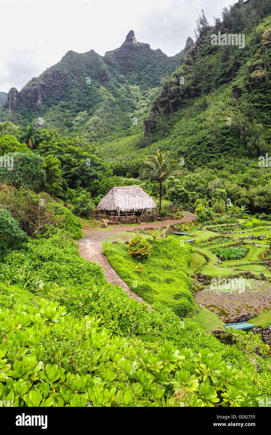 Sweeping garden path stock photos sweeping garden path - National tropical botanical garden kauai ...
