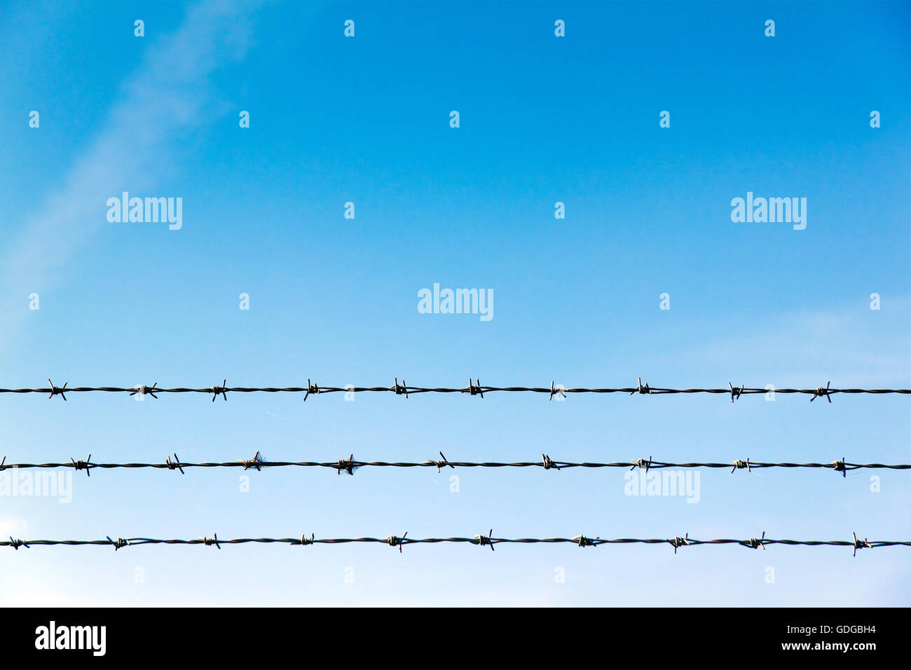 Barbwire danger zone - Stock Image