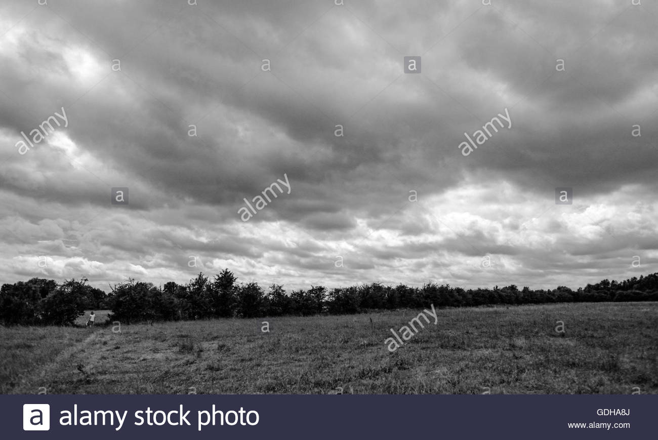Solitary,female walker seen following a natural path through a summer field towards an opening. - Stock Image