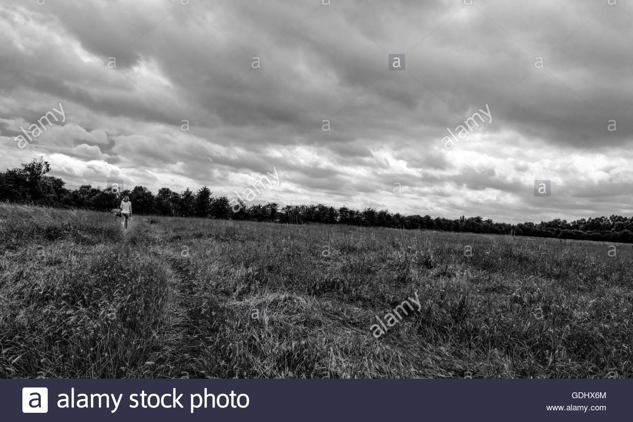 Solitary female walker following a natural path in a summer meadow. - Stock Image