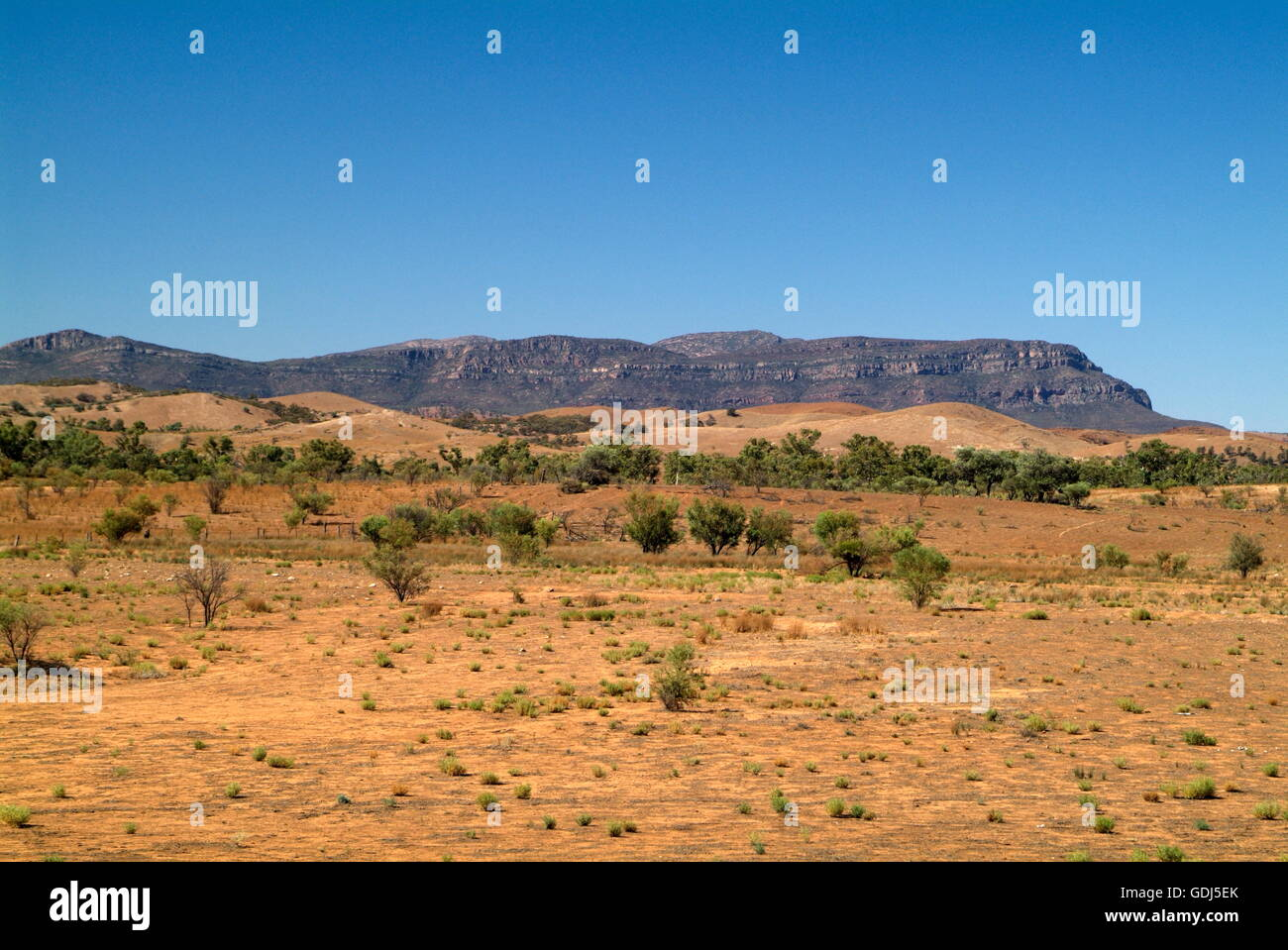 geography / travel, Australia, landscapes, Wilpena Pound, farmland, - Stock Image