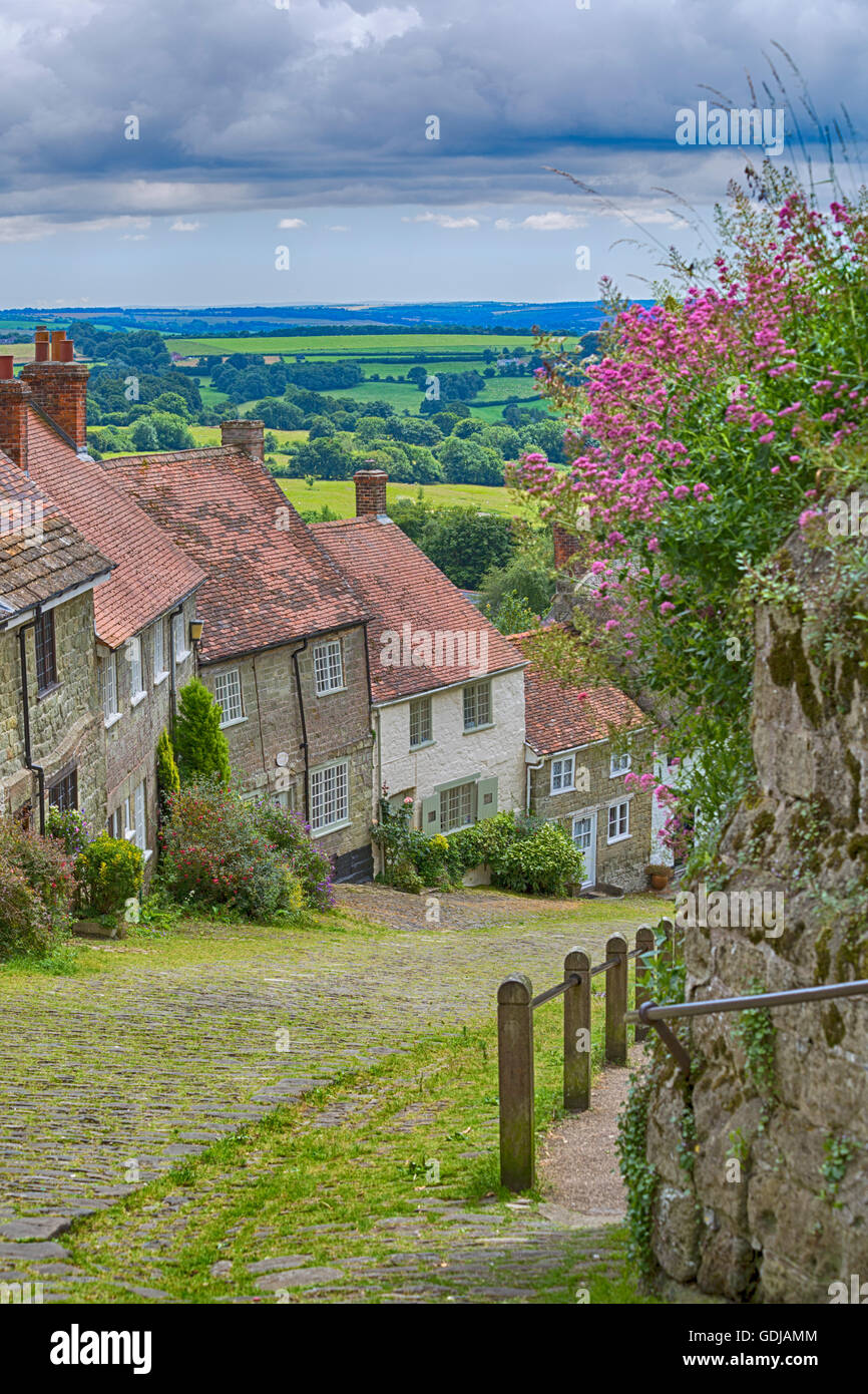Famous cottages at Gold Hill, Shaftesbury, Dorset in July - Stock Image