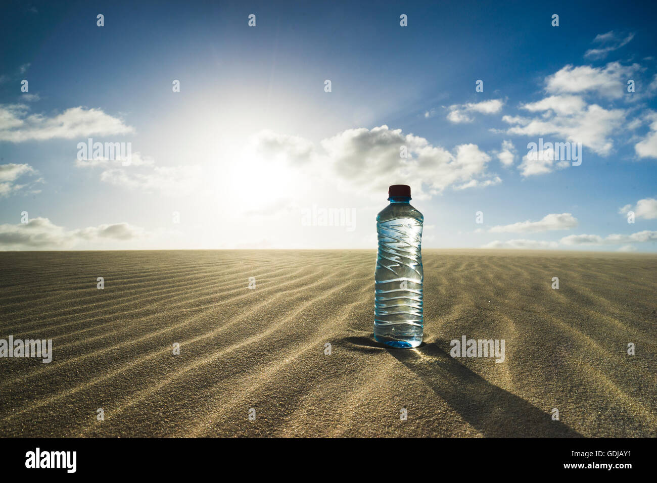 water bottle in desert landscape with dunes and sun - Stock Image