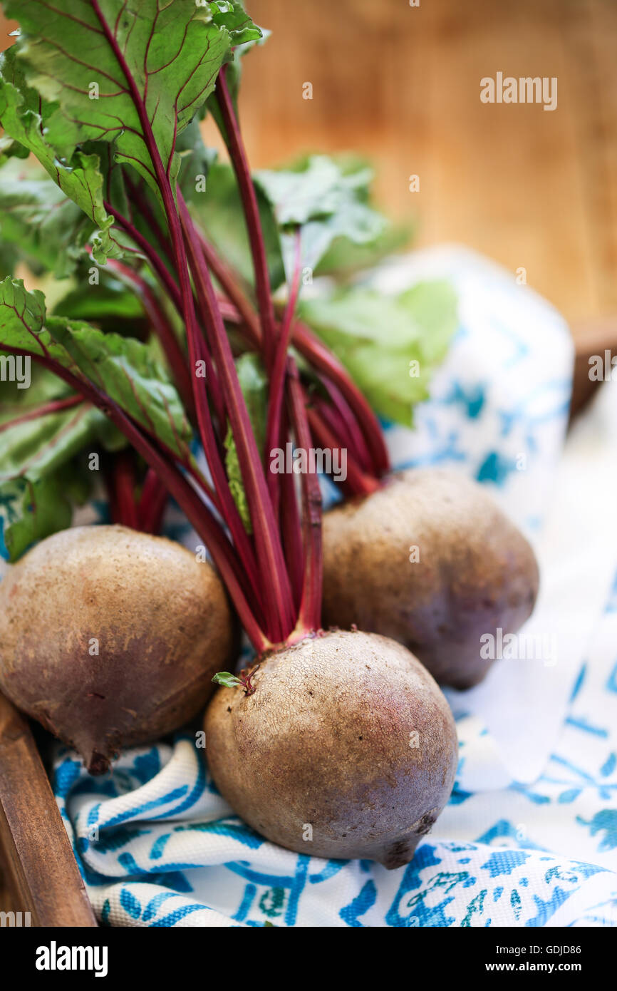Beetroot on a white and blue dish cloth - Stock Image