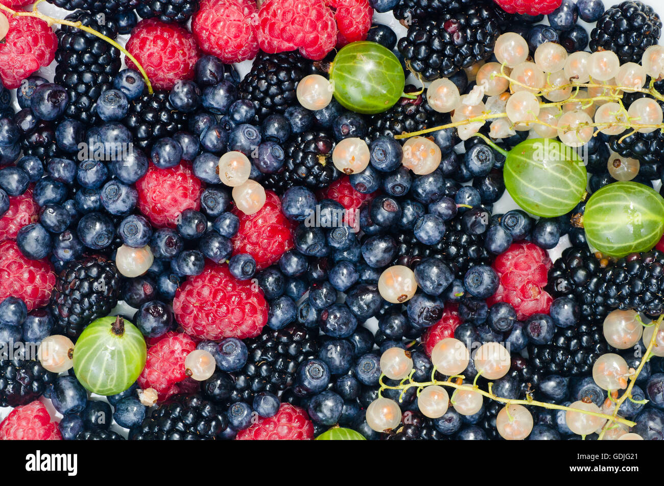 summer mixed colorful berries - Stock Image