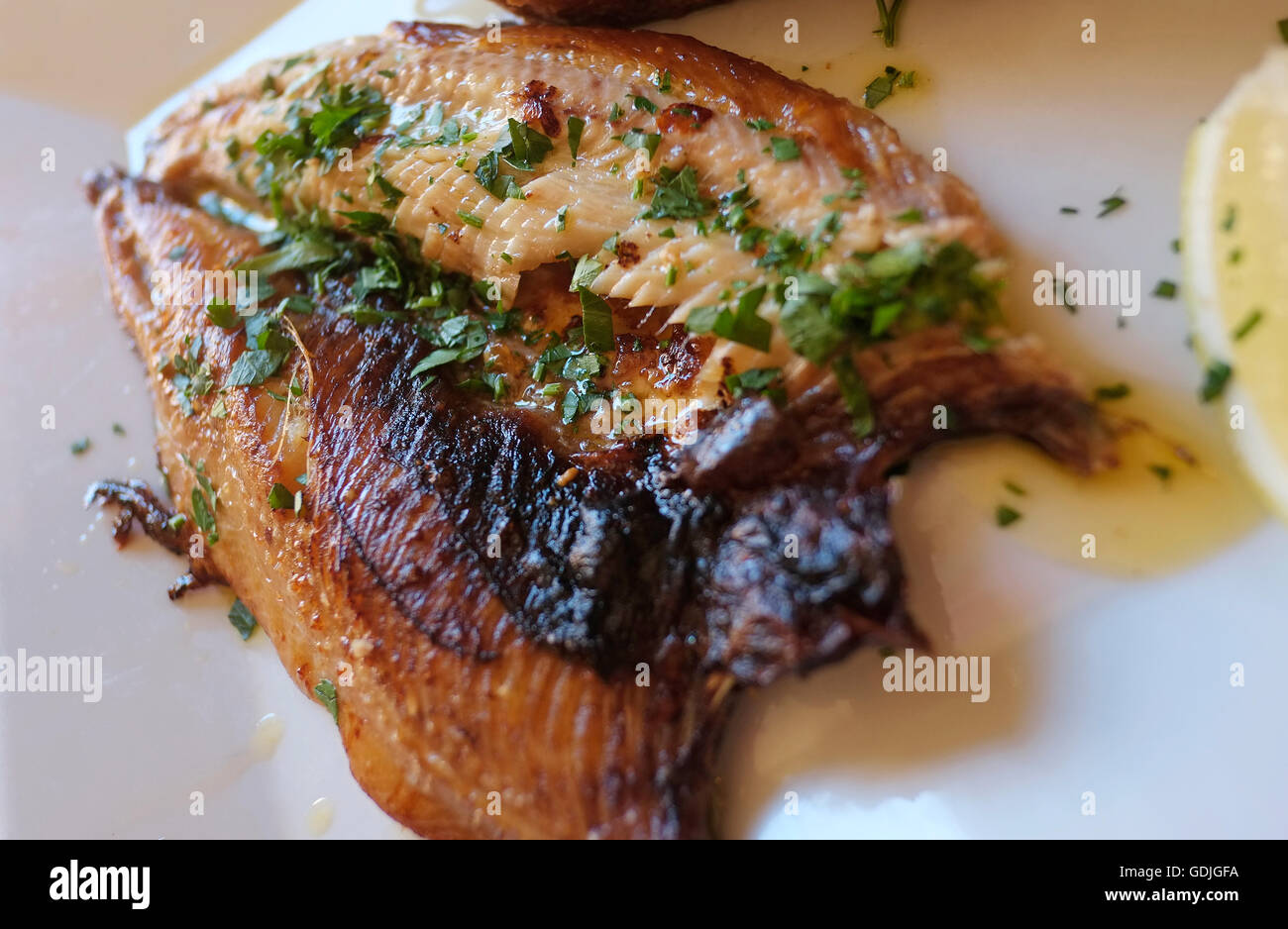 grilled north norfolk kipper on a white plate - Stock Image