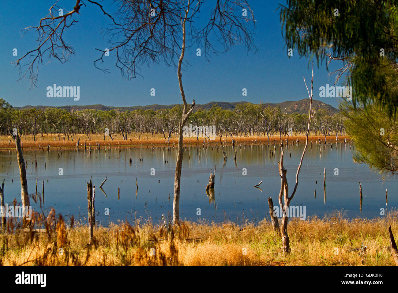 Vast calm blue waters of Lake Nuga Nuga with rugged Carnarvon ranges on horizon under blue sky in outback Qld Australia Stock Photo