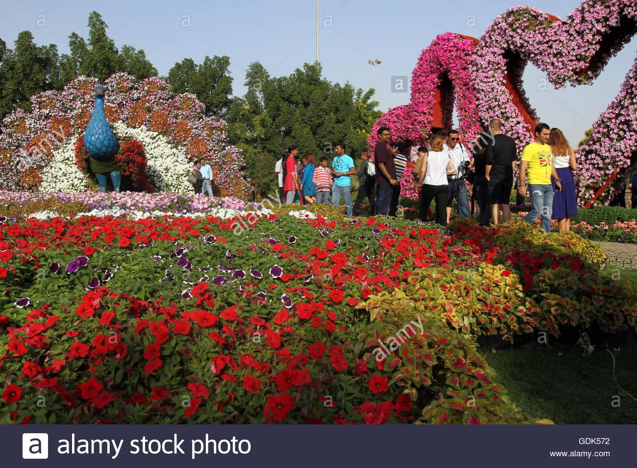 People walk through the Dubai Miracle Gardens, Dubai, UAE Stock ...