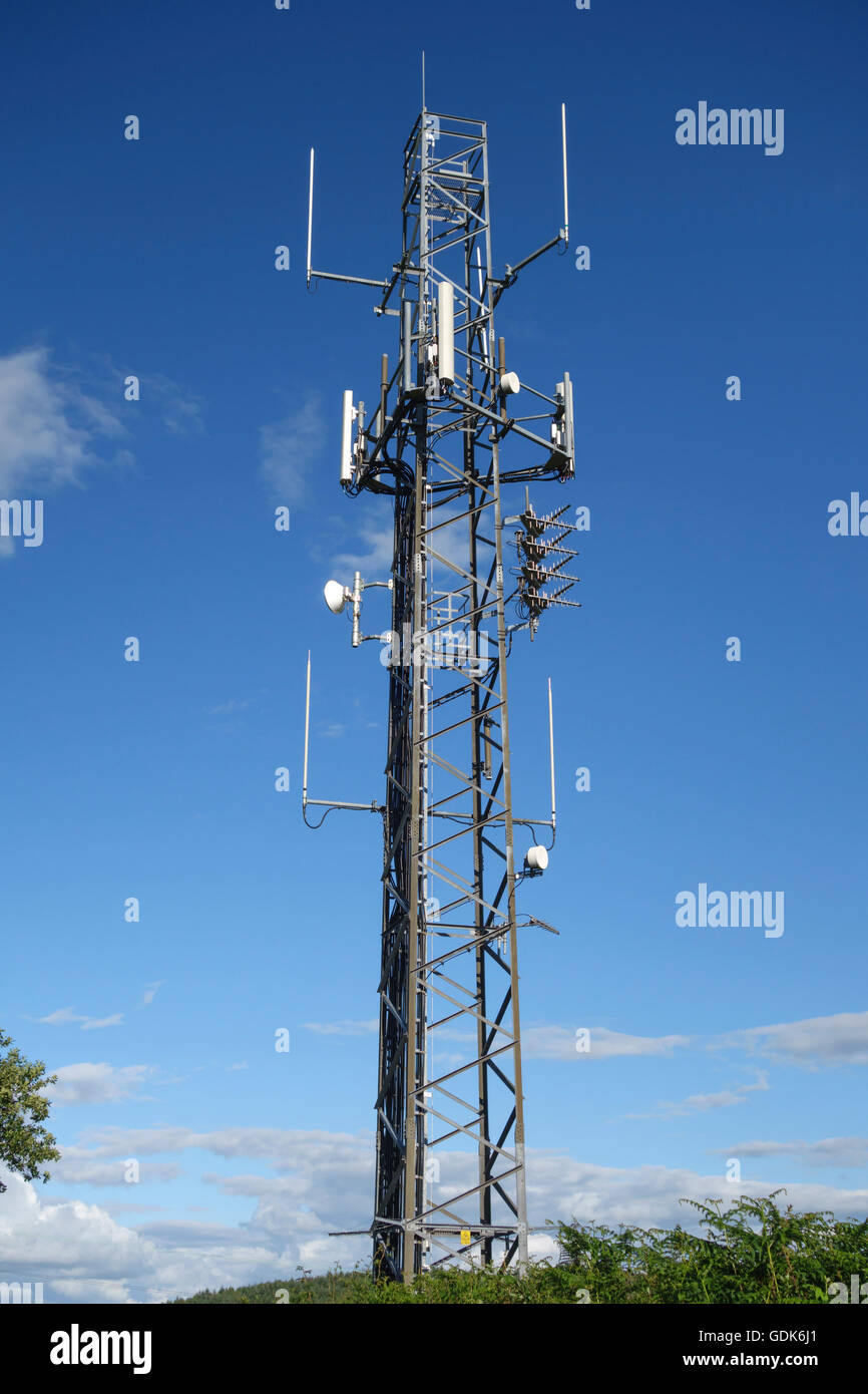 Herefordshire, UK. A mobile phone mast in the countryside - Stock Image