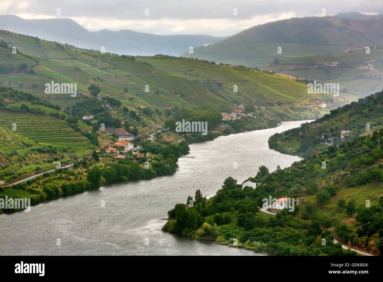 Wine area medium Douro River, Douro Valley, Vineyard, Panorama, Santa Cristina, District of Vila Real, Portugal, - Stock Image