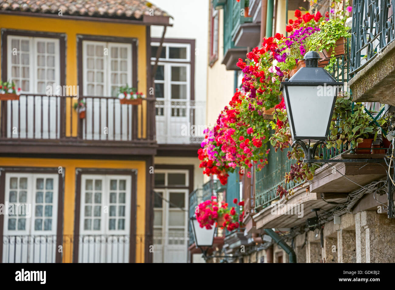 Hanging baskets on the balconies of the old town in Guimaraes, Guimaraes, Braga District, Portugal, Europe, Travel, - Stock Image