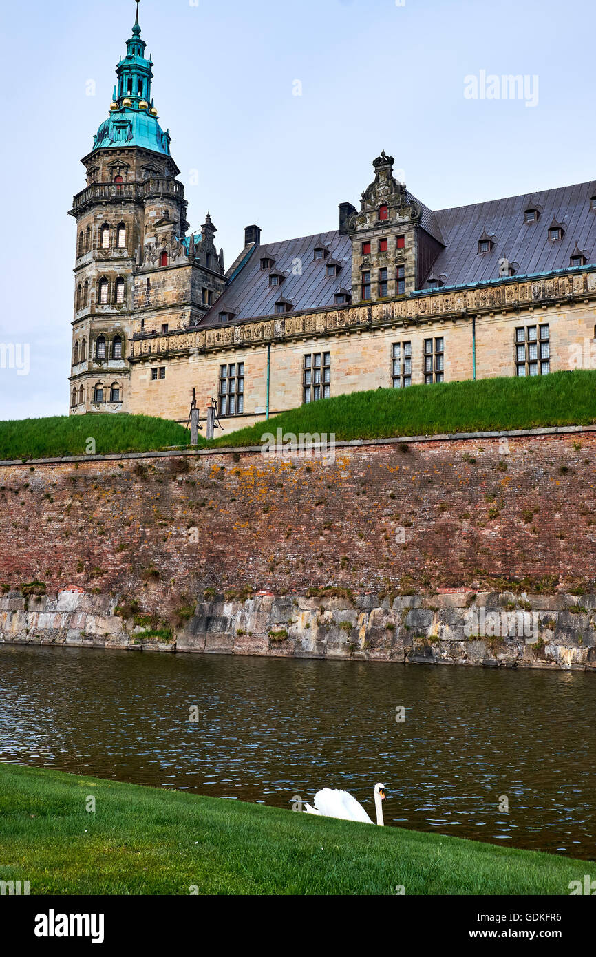 Tower on Elsinore castle in Denmark, rising over the moat with a white swan swimming around - Stock Image