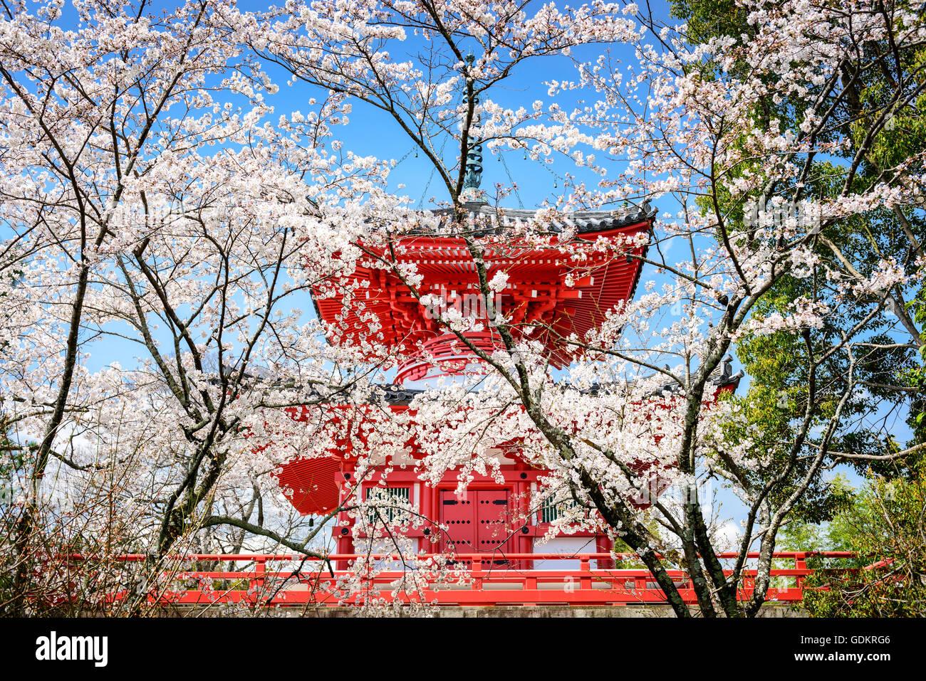 Kyoto, Japan at Daikaku-ji Temple. Stock Photo