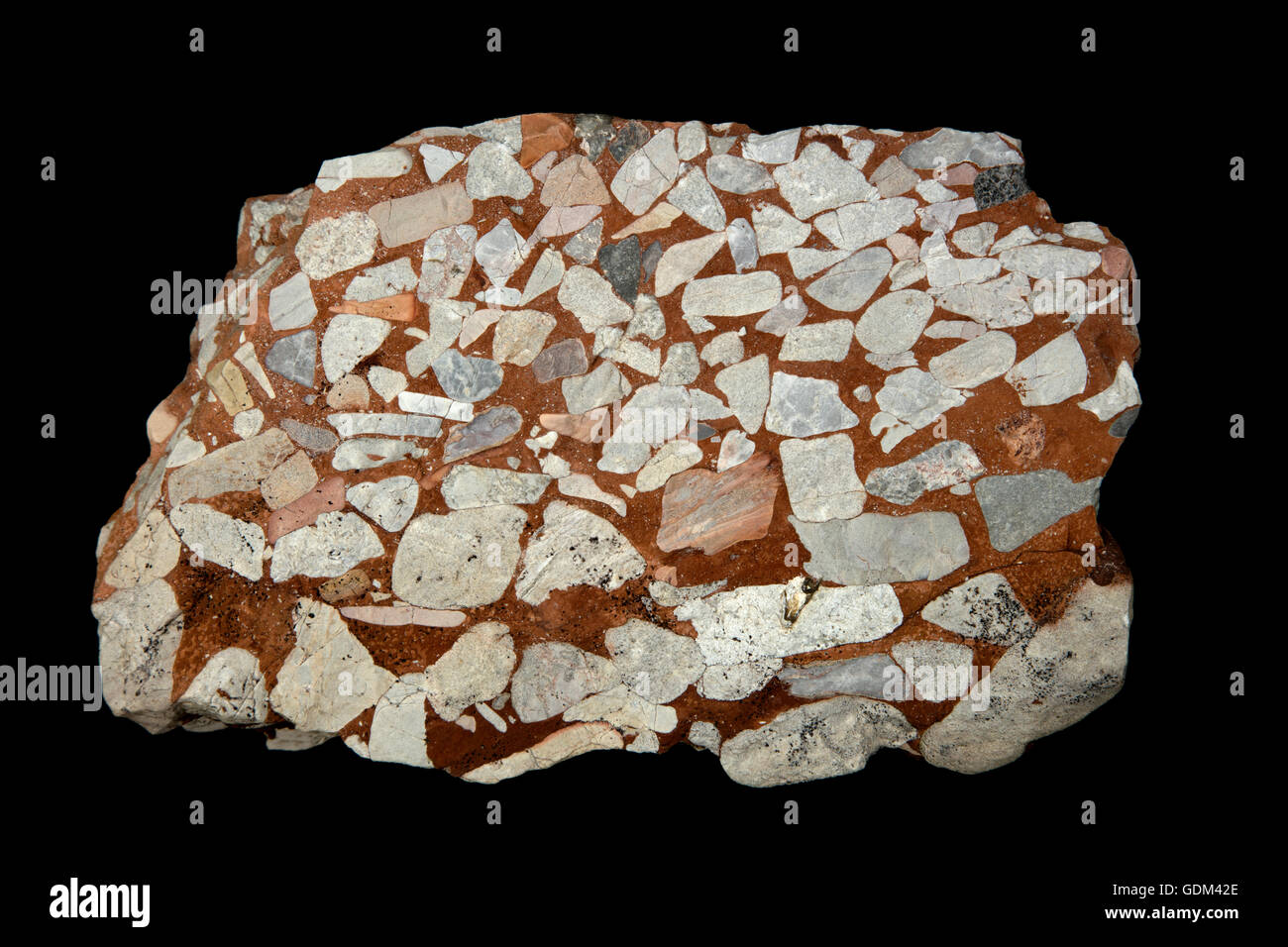 Leesburg Limestone Conglomerate  - Frederick county Maryland, Formed in a Triassic half grabben, Culpepper Basin - Stock Image