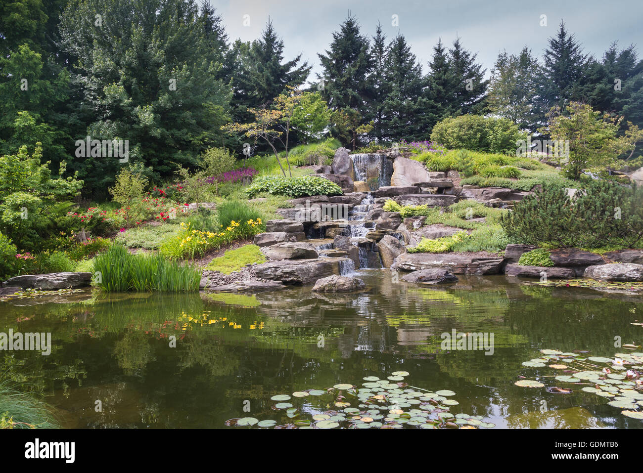 Calm water of a lake with a waterfall in a japanese garden, surrounded by trees and plants. Meijer Garden, Grand - Stock Image