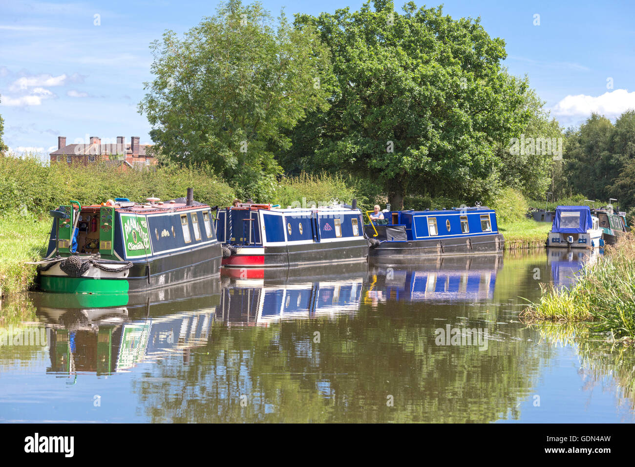 The Trent and Mersey Canal near Wychnor, Stafordshire, England, UK - Stock Image
