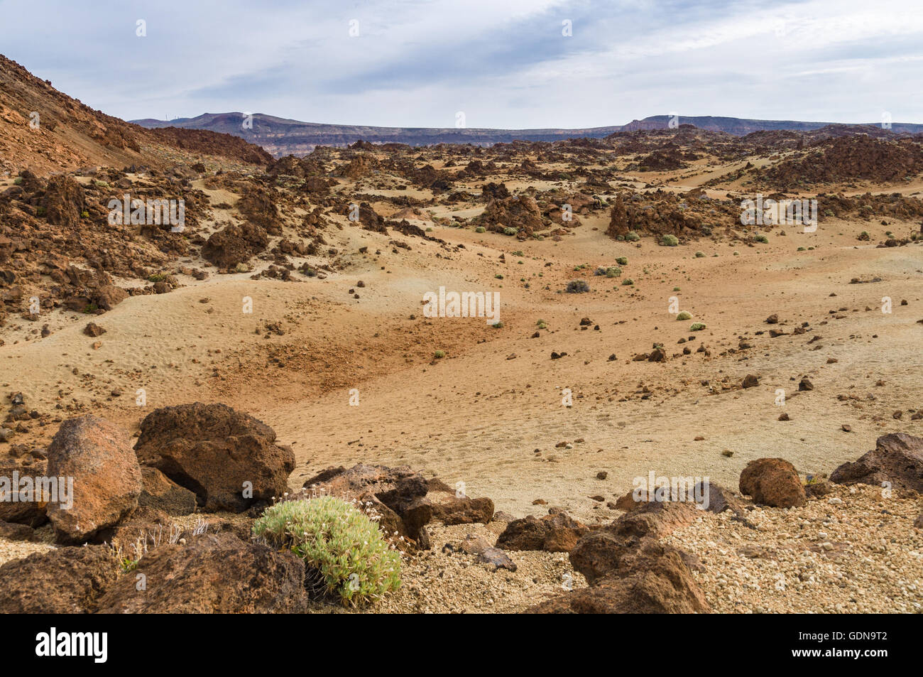 Volcanic landscape with sparse vegetation, Teide National park, Tenerife, Spain - Stock Image