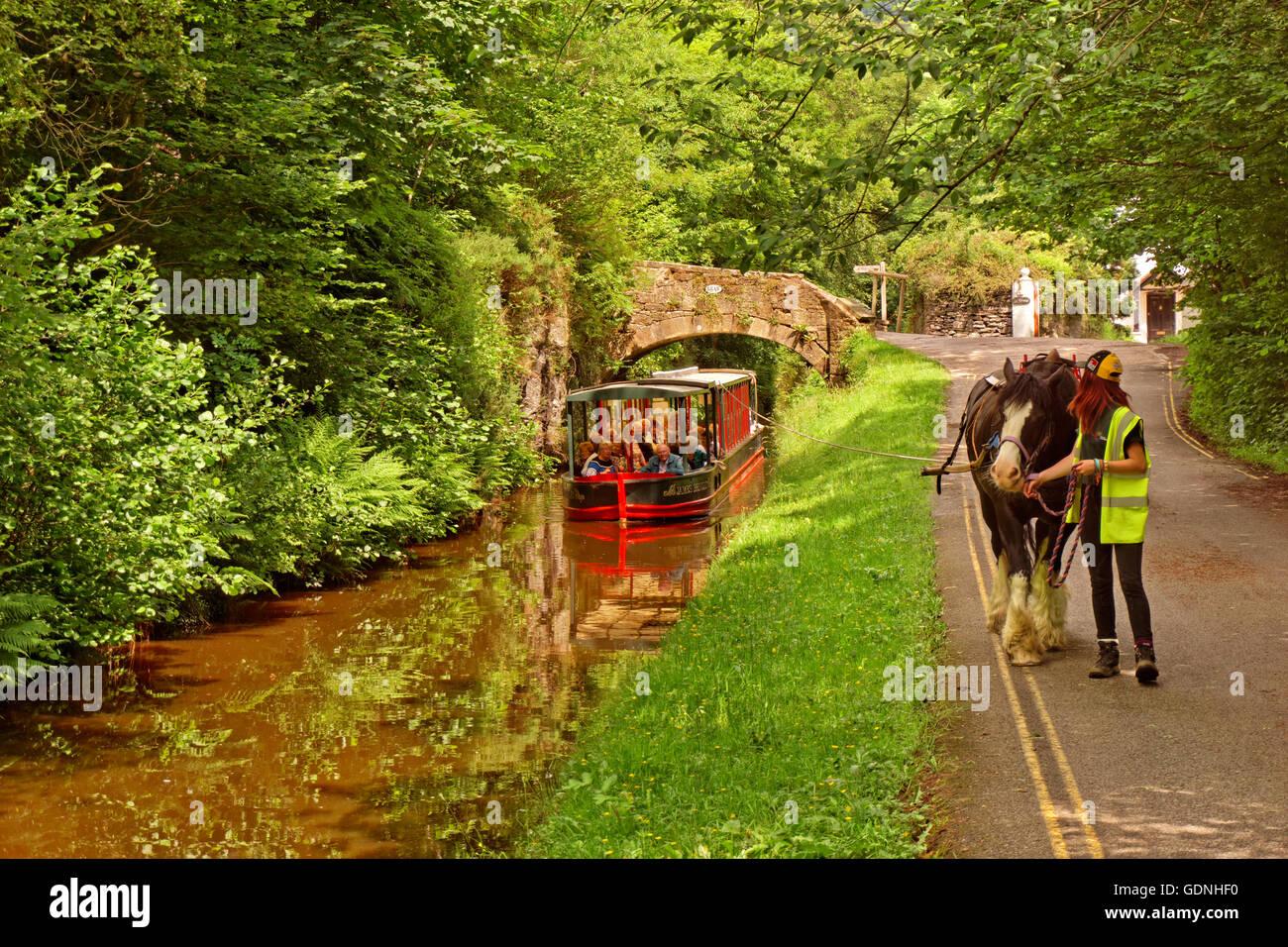 Horse drawn tourism barge on the upper Llangollen Canal near the Horseshoe Falls at Llangollen, Denbighshire, Wales - Stock Image