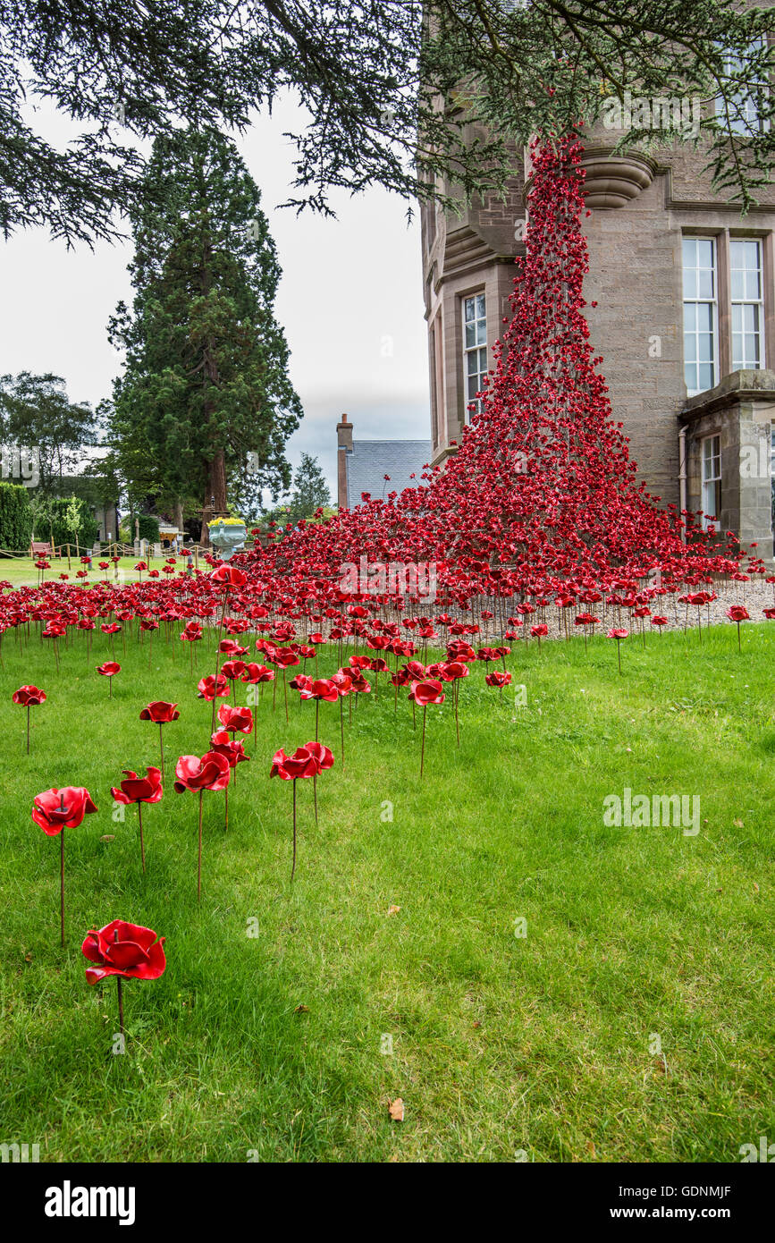 The Weeping Window display at the Black Watch Museum in Perth Scotland - Stock Image
