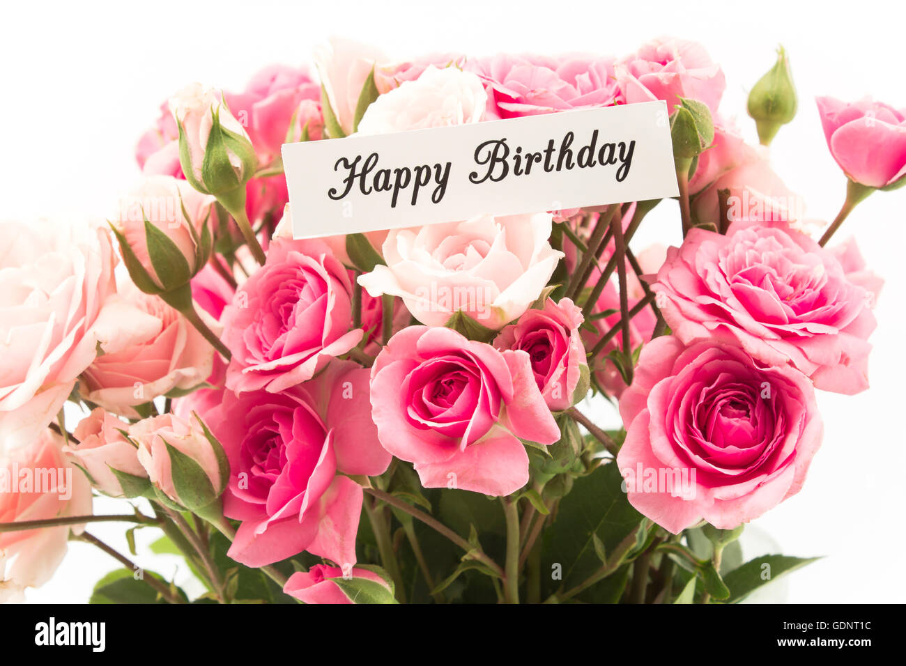 Birthday Card Roses Happy Birthday Stock Photos Birthday Card