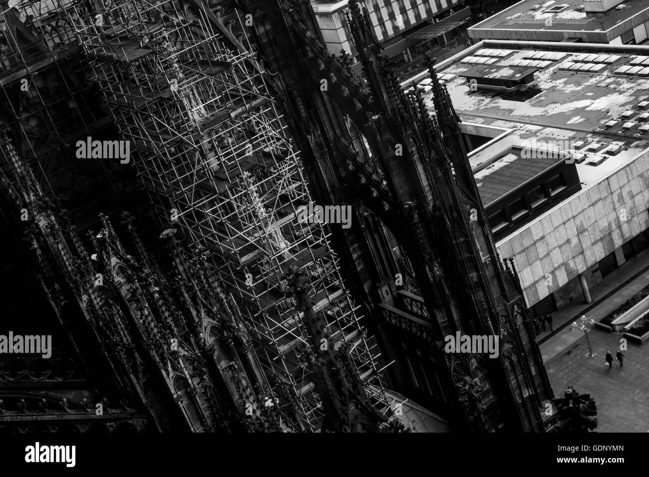 Scaffolding erected on the Cologne Cathedral for renovations to take place. Cologne, Germany. - Stock Image