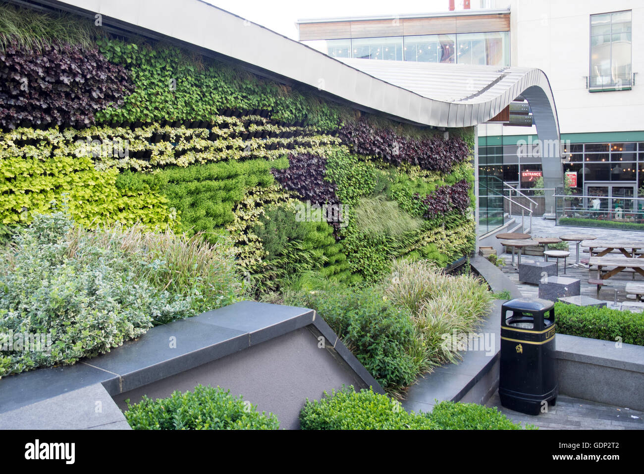A Vertical Garden Of Vines And Hedges.   Stock Image
