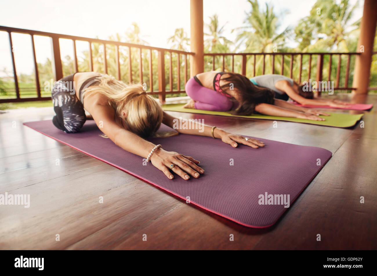 Group of young women doing stretching workout on fitness mat. Women at yoga class bending forward on their yoga - Stock Image