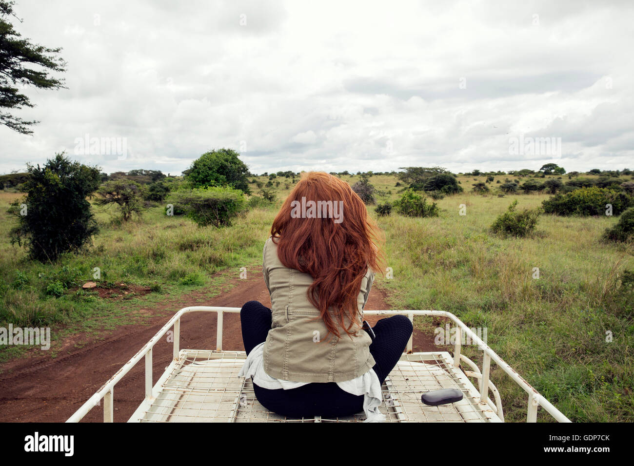 Woman enjoying ride on top of vehicle in wildlife park, Nairobi, Kenya - Stock Image