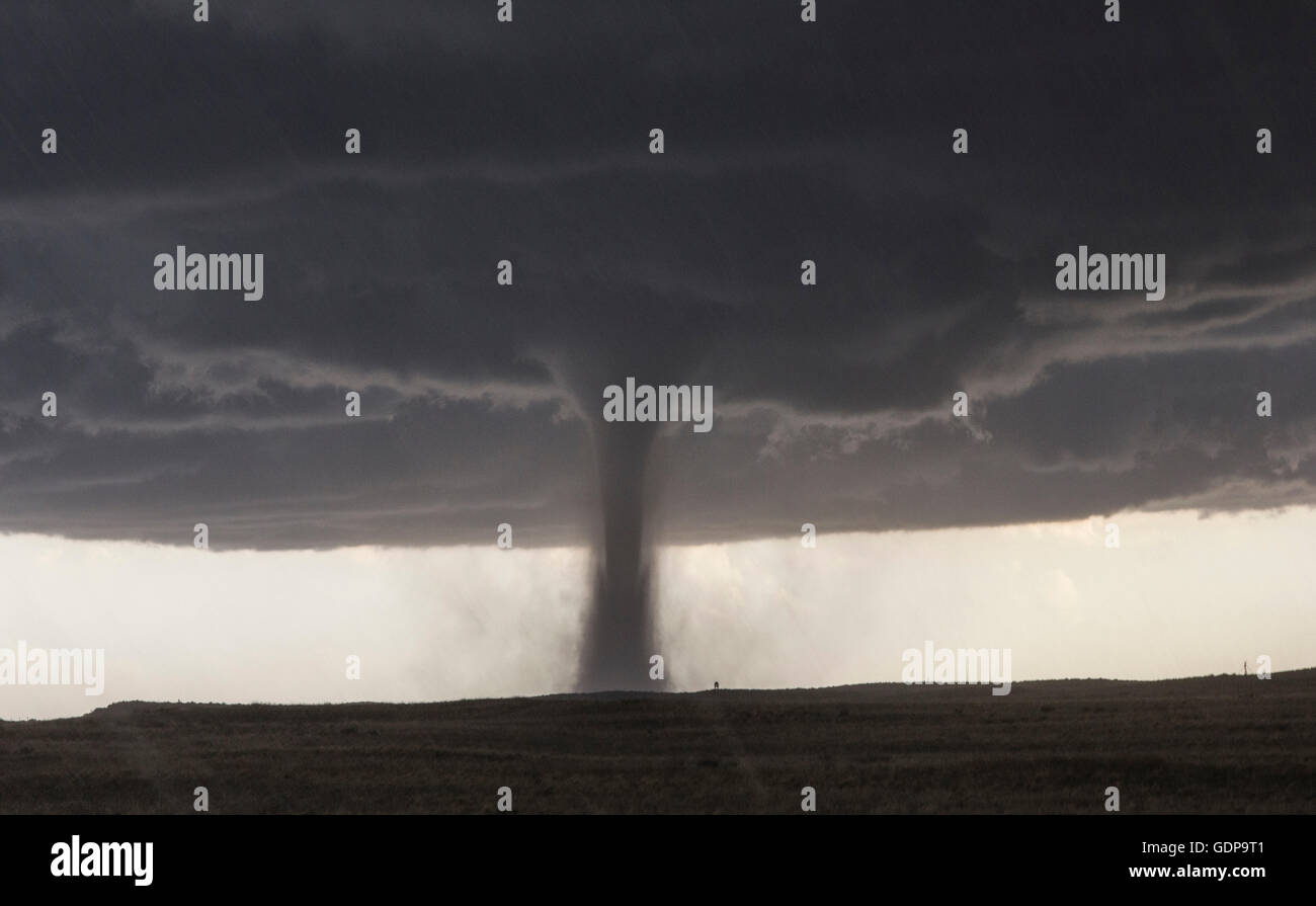 A nearly perfectly vertical tornado forms on a stationary supercell in Colorado - Stock Image