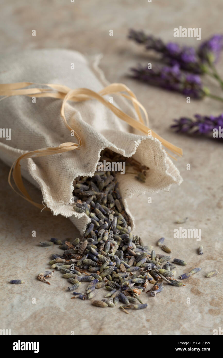 Linen sack with dried lavender flowers - Stock Image