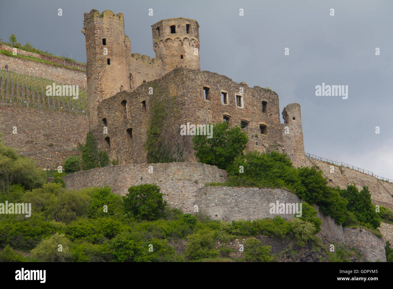Ehrenfels Castle is a ruined castle above the Rhine Gorge near the town of Rudesheim, Germany - Stock Image