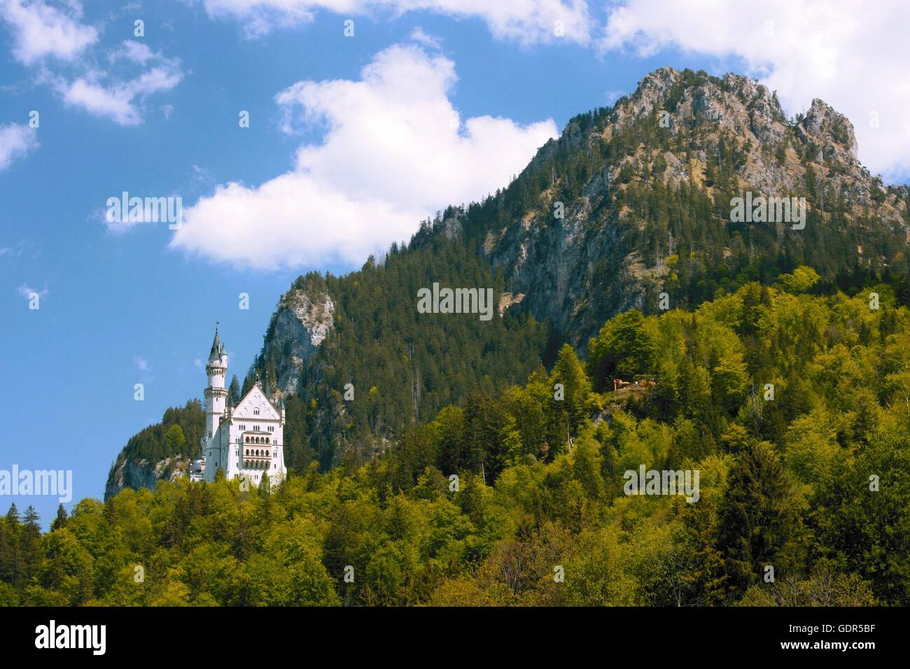 geography / travel, Germany, Bavaria, Neuschwanstein Castle, , Additional-Rights-Clearance-Info-Not-Available - Stock Image