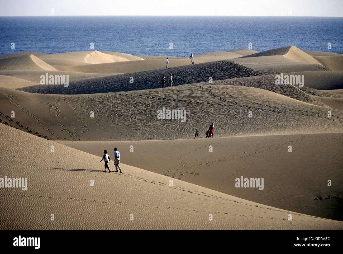 the Sanddunes at the Playa des Ingles in town of Maspalomas on the Canary Island of Spain in the Atlantic ocean. - Stock Image