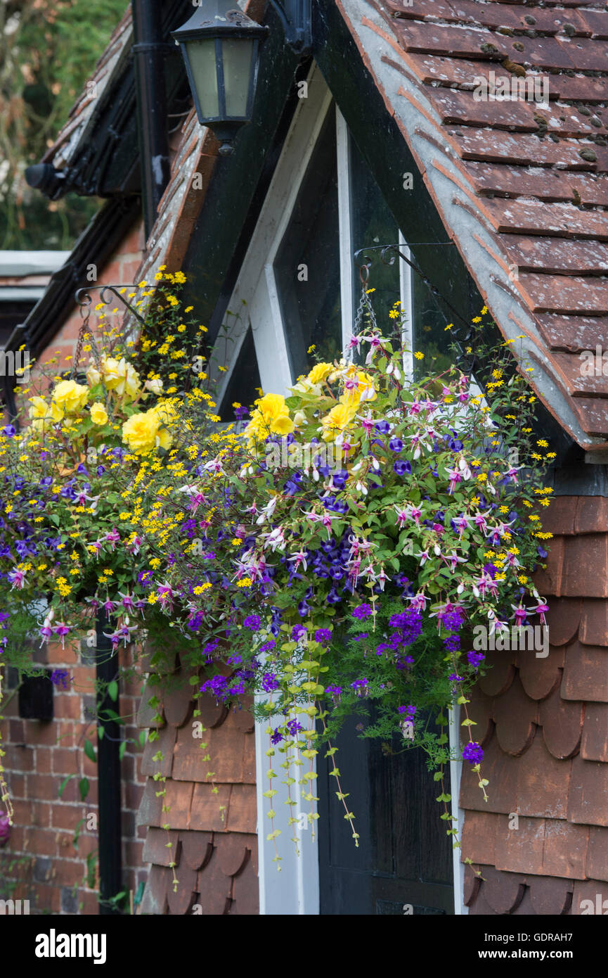 Hanging baskets of flowers on a cottage. Hambleden, Buckinghamshire, England - Stock Image