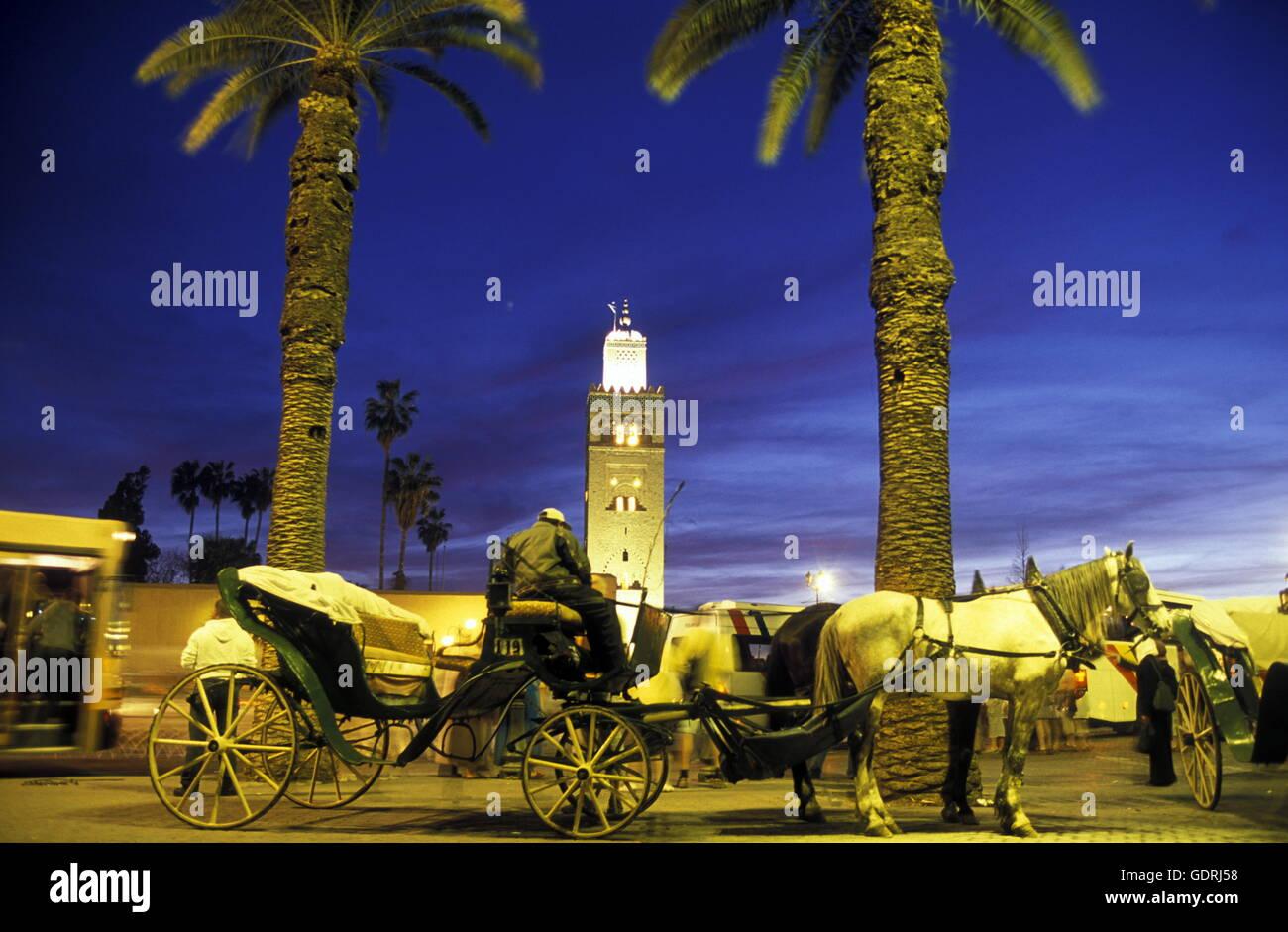 Die Koutoubia Moschee am Djemma el Fna Platz in der Altstadt von Marrakesh in Marokko in Nordafrika. - Stock Image