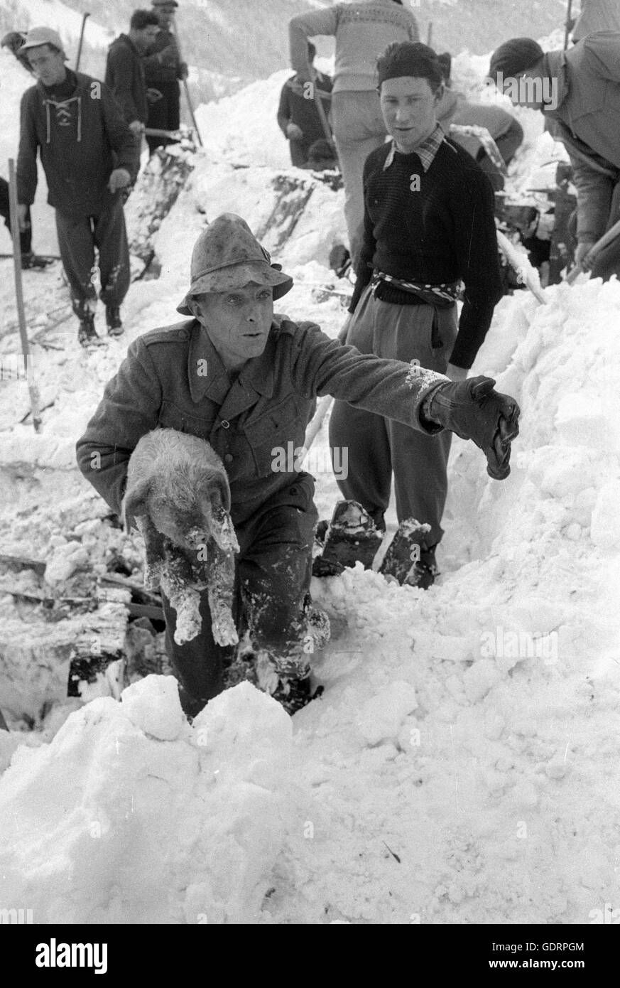 After an avalanche rescuers dig their way through the snow to a building, 1956 - Stock Image