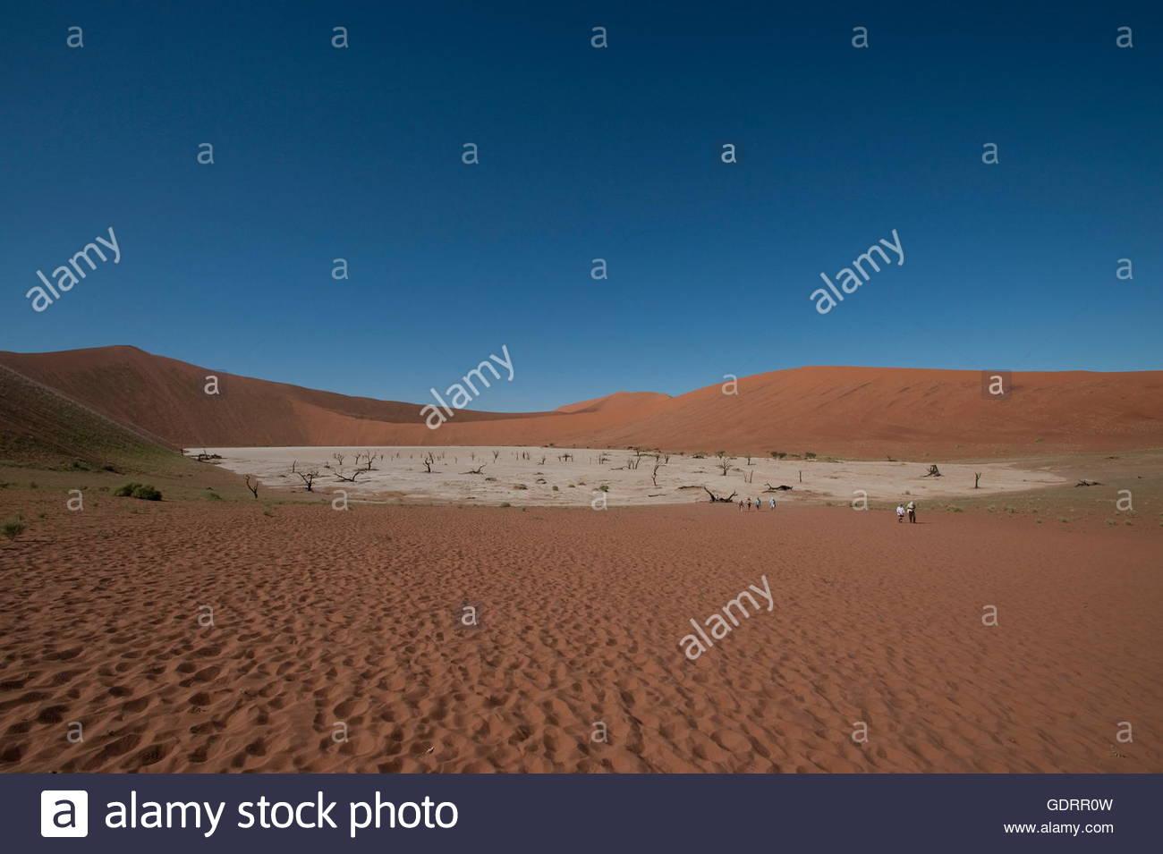 geography / travel, Namibia, Dead Vlei at Sossusvlei in Naukluft Park Namib desert Namibia - Stock Image