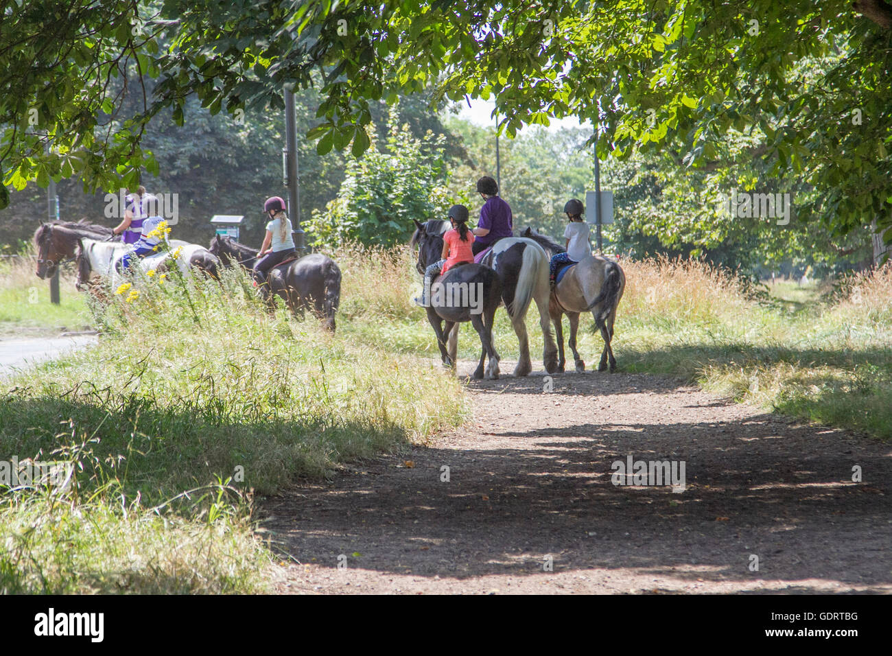 London, UK. 20th July 2016. A group of horse riders  form a local riding school on Wimbledon Common on hot day  Stock Photo